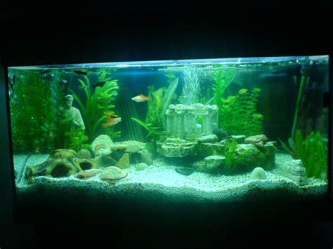 deko für aquarium aquarium deko kleid