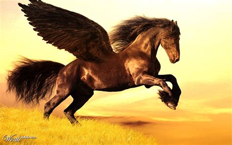 brown pegasus photoshop unicorns pegasi place submission contests worth1000 6th entry contest
