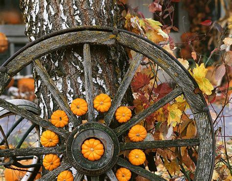 Herbstdeko Garten 2018 by Ideen F 252 R Sch 246 Ne Herbstdeko Mit Wagenrad Innen Und Au 223 En