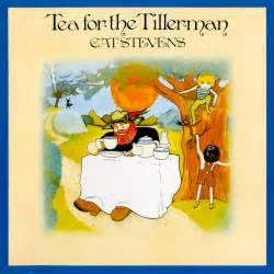 she sins vinyl wednesday cat tea for the tillerman