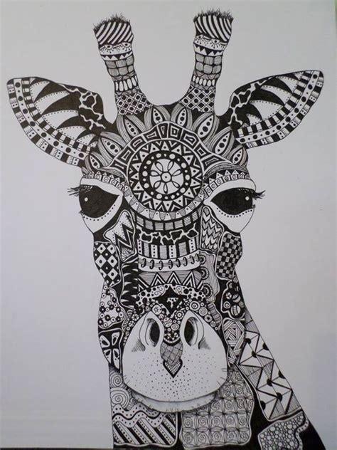 spring giraffes  zentangle  pinterest