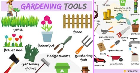 tools used for gardening gardening tools vocabulary in quot in the garden
