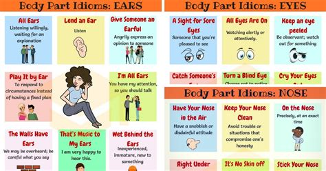 face idioms  common face expressions idioms