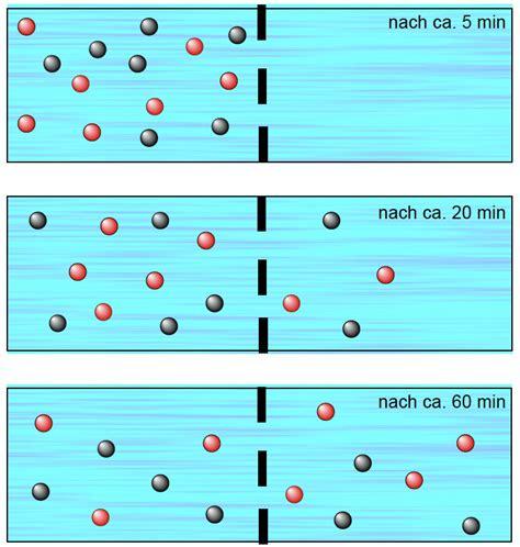 was ist diffusion diffusion durch eine vollpermeable membran