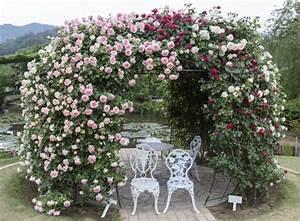 Pergola Mit Wein Bepflanzen : torb gen f r den garten auswahl und bepflanzung das gartenmagazin ~ Eleganceandgraceweddings.com Haus und Dekorationen