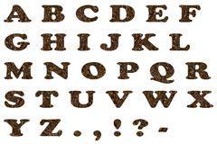 english alphabet   coffee beans stock photo image