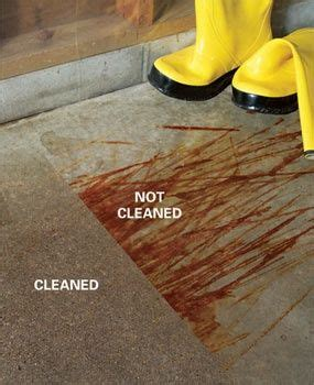 how to clean stained concrete stains stains and how to get on 7221