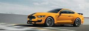 2019 Ford Mustang Shelby GT350® for Sale in Pompano Beach, FL, Near Fort Lauderdale