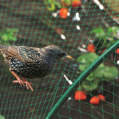 anti bird netting plastic diamond mini rolls 2m x 5m