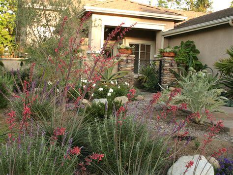 drought resistant landscape   home ideas