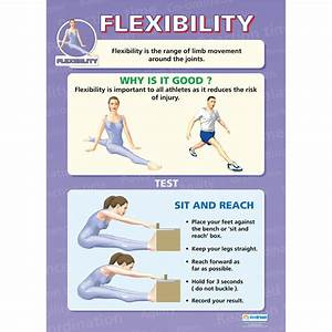 Components Of Physical Fitness Poster Set Indoor Fitness