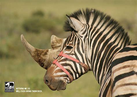 powerful animal advertisement examples  tells