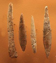 les 20 meilleures idées de la catégorie paléolithique sur maquis