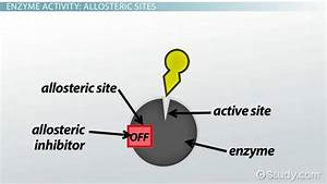 What Is An Allosteric Site Of The Enzyme