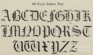 Old English Font Drawing by English School