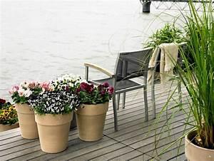 Balkonpflanzen Winterfest Machen : terrassenbepflanzung praktische tipps und kreative ideen ~ Watch28wear.com Haus und Dekorationen