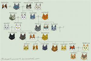 Bluestar's family tree (CONTAINS TONS OF SPOILERS) by ...