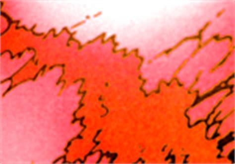 wie man bedruckte stoffe ohne grundierung bemalt