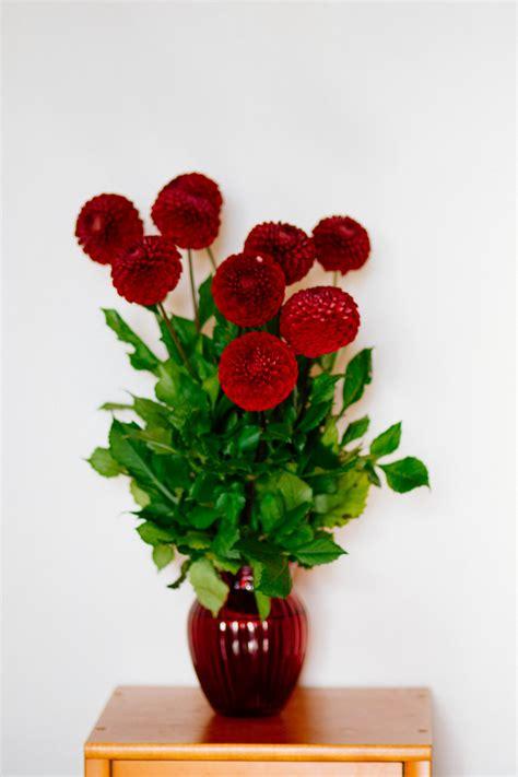 flowers in vase flower vase 183 free stock photo