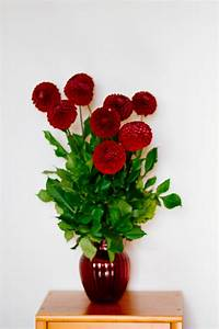 Red Flower Vase · Free Stock Photo