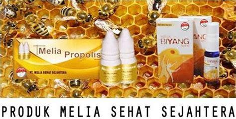 clearance sale original 100 produk herbal pt mss melia biyang spray dan propolis gold