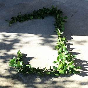 wire hanger boxwood letters hearth vine With boxwood letters