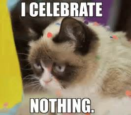 grumpy cat birthday 10 lessons you can learn from grumpy cat in gifs and