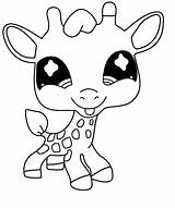 Giraffe Coloring Pet Littlest Drawing Printable Chibi Coloriage Petshop Colorat Mandala Printables Puppy Planse Ohbq Cu Kid Popular sketch template