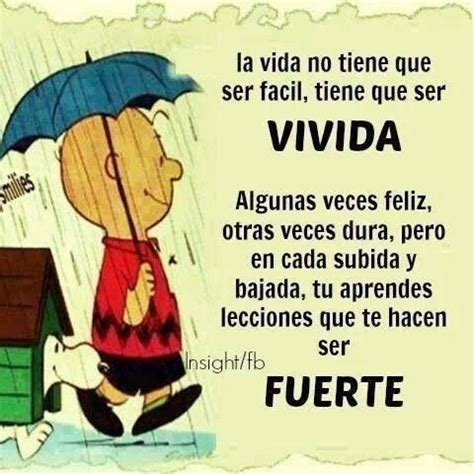 1000 images about frases locas pinterest antigua einstein and pablo picasso