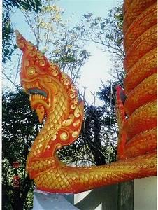 Neak Dragon Gallery