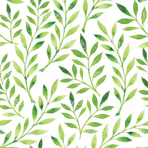 drawing   pattern  green leaves   white