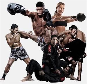 Evolve MMA Singapore   Asia's #1 Mixed Martial Arts Gym