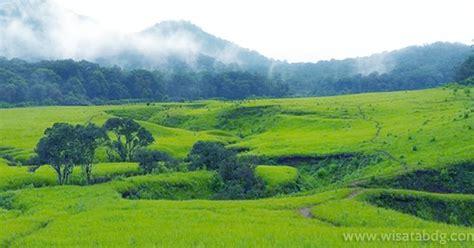 panorama savana tegal panjang primadona alam pangalengan