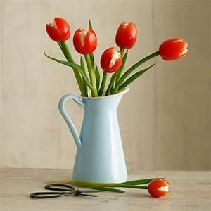 Tulpen In Vase : tulpen aus tomaten und schnittlauch in einer vase essen anrichten pinterest schnittlauch ~ Orissabook.com Haus und Dekorationen