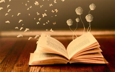 book hd wallpaper background image  id
