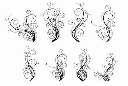 Vector Flourishes Flourish Garnish Pack Clipart Designs