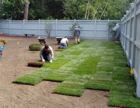 grass installation lawn renovation grading sodding seeding services kg landscape