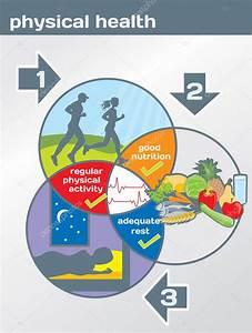 Physical Health Diagram  Physical Activity  Good Nutrition