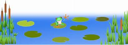 Pond Frog Clipart Frogs Lily Water Swamp