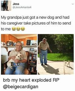 25+ Best Memes About Caregiver | Caregiver Memes
