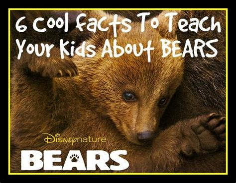 6 cool brown facts inspired by disneynature s bears 604 | d57ecc250e37fc869738aaf40b4ebcdf brown bear facts brown bears