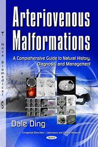 Arteriovenous Malformations  A Comprehensive Guide To