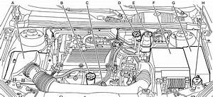 Diagram  2003 Chevy Malibu Engine Diagram Full Version Hd