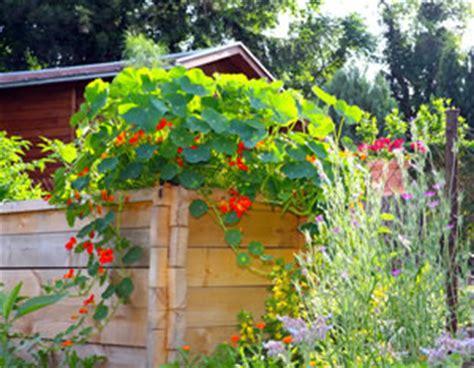 Bepflanzen Eines Hochbeetes by Hochbeet Selber Bauen Anlegen Und Bepflanzen Bauanleitung