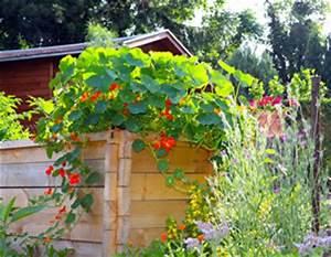 Hochbeet Blumen Bepflanzen : hochbeet selber bauen anlegen und bepflanzen bauanleitung ~ Whattoseeinmadrid.com Haus und Dekorationen
