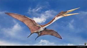 What's your favorite flying Dinosaur (Pterosaur ...  Quetzalcoatlus