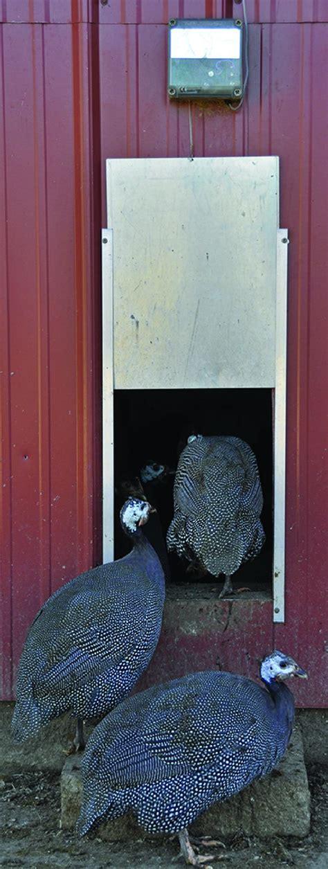 best automatic chicken door find the best automatic chicken door opener countryside