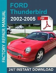 Ford Thunderbird 2002 2003 2004 2005 Workshop Manual