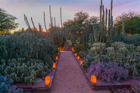 desert botanical gardens in attractions us airways center attractions in