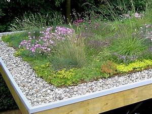 Extensive Dachbegrünung Pflanzen : 38 besten begr ntes dach bilder auf pinterest dachbegr nungen landschaftsbau und dachs ~ Frokenaadalensverden.com Haus und Dekorationen